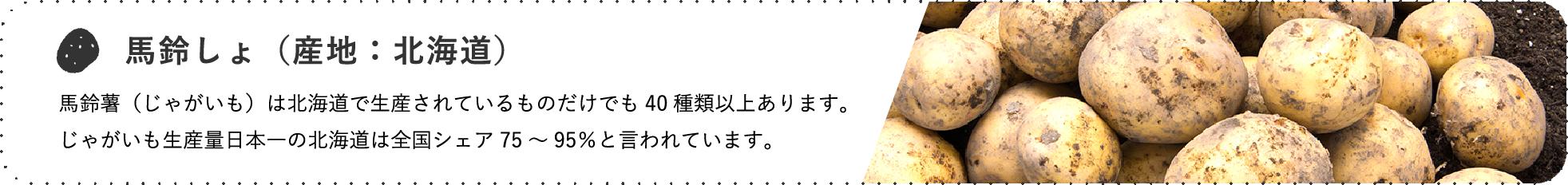 馬鈴しょ(産地:北海道) / 馬鈴薯(じゃがいも)は北海道で生産されているものだけでも40種類以上あります。じゃがいも生産量日本一の北海道は全国シェア75~95%と言われています。