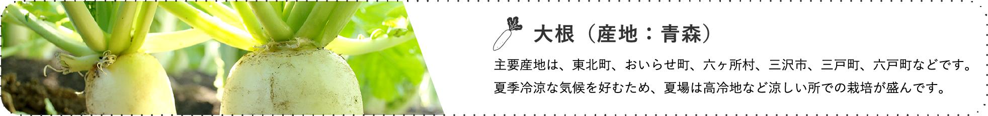 大根(産地:青森) / 主要産地は、東北町、おいらせ町、六ヶ所村、三沢市、三戸町、六戸町などです。夏季冷涼な気候を好むため、夏場は高冷地など涼しい所での栽培が盛んです。