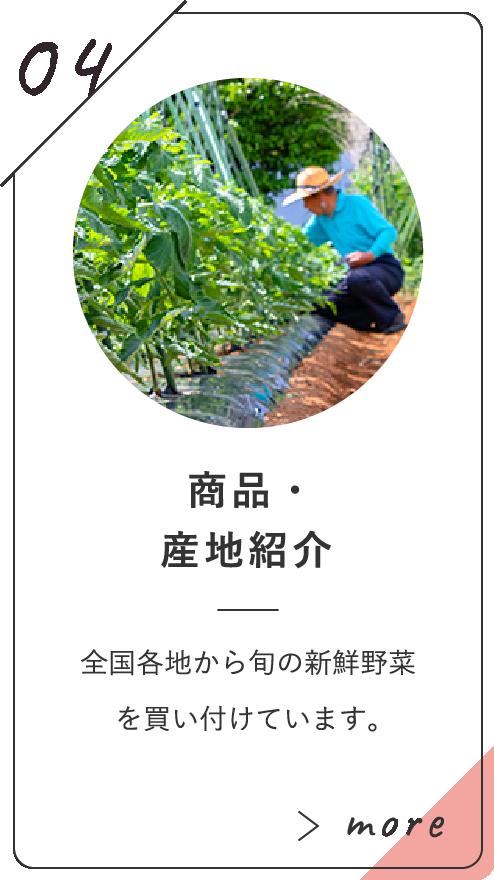 商品・産地紹介